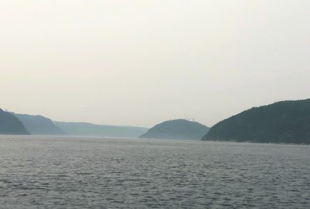 Pas l'unanimité pour le comité de liaison – Le bureau de projet du pont sur le Saguenay amorce ses travaux