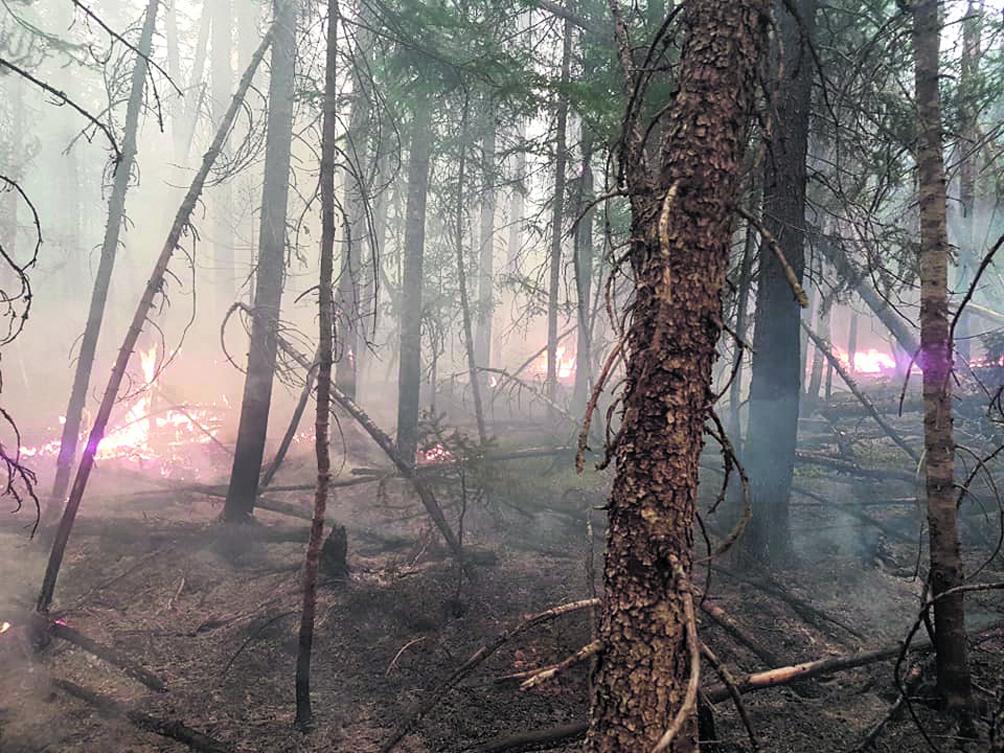 Après le feu de forêt  # 261 – La zec de Labrieville va de l'avant