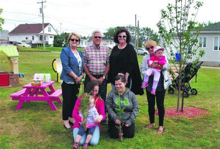 Parc des naissances – Forestville dévoile les naissances de 2017