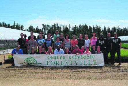 Le Centre Sylvicole de Forestville : déjà 30 ans d'existence