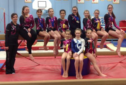 Une récolte de 12 médailles pour le club de gymnastique l'Envol