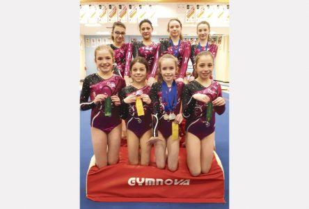 Le Club l'Envol décroche cinq médailles