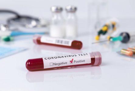 COVID-19 : plus de 13 000 tests de dépistage par jour au Québec
