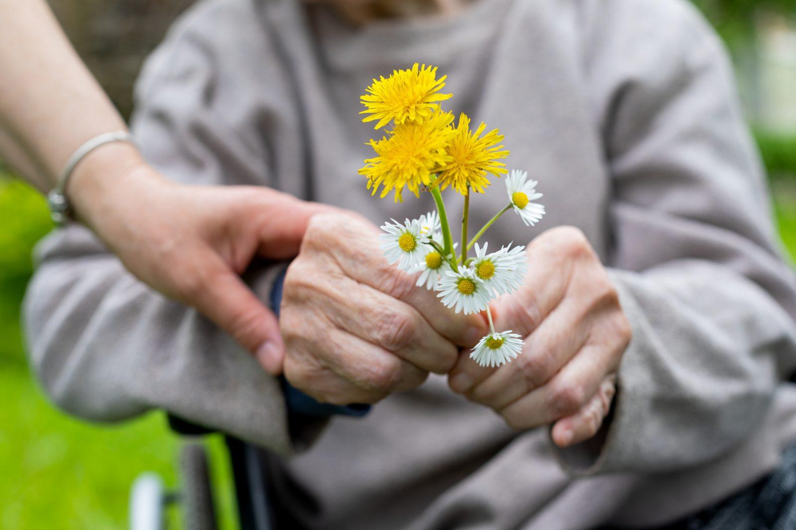 Chronique : Les fleurs du jardin de madame Marie-Paule