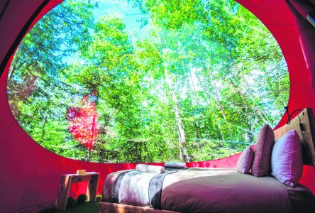 Place au camping version COVID-19