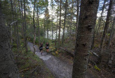 Béluga Ultra Trail : « la plus belle course en sentier au Québec »