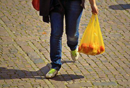 Plus de sacs plastiques chez IGA