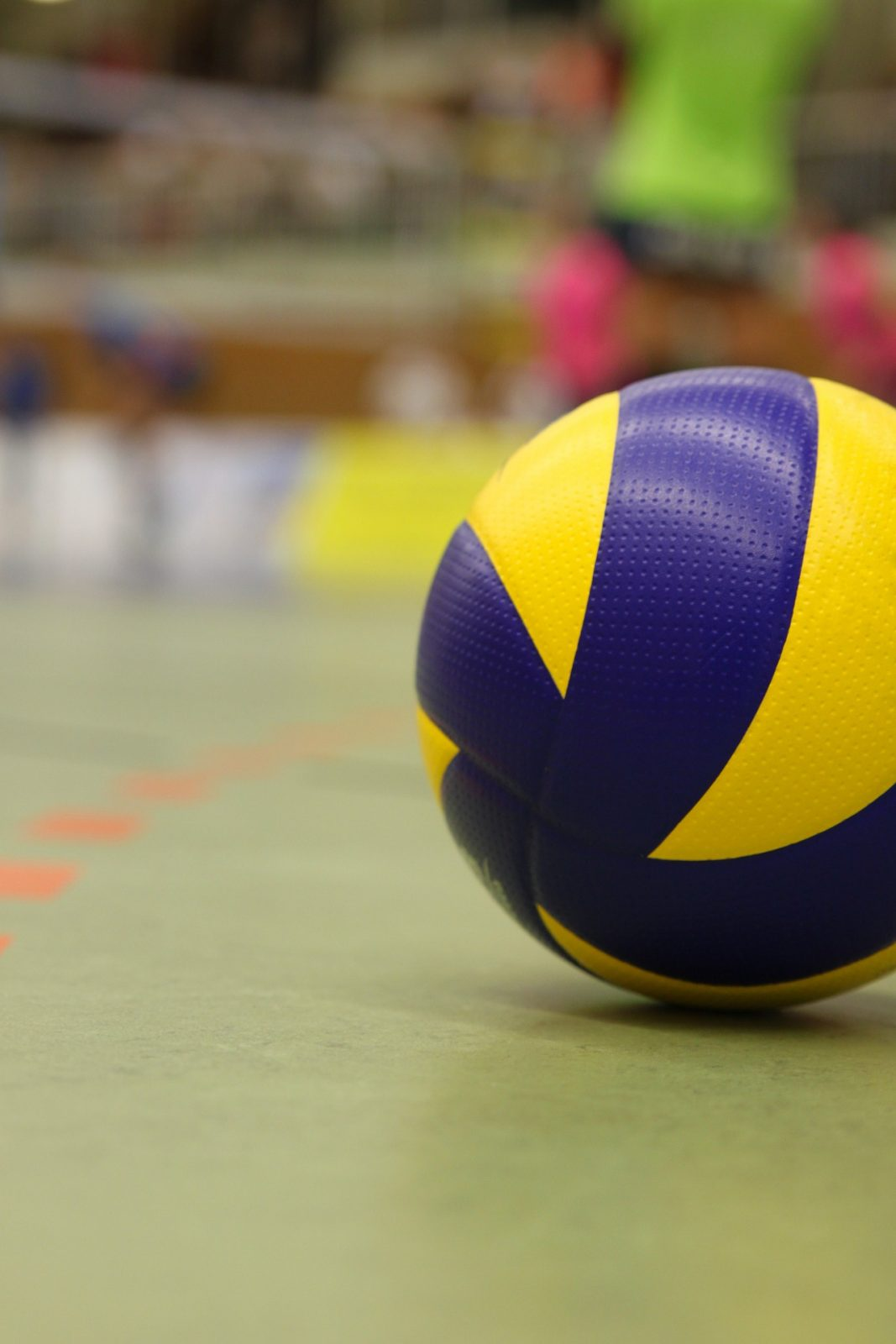 Le Club les Macareux travaille sur un projet de Sport-études régional